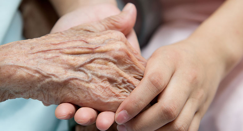elderly old hands