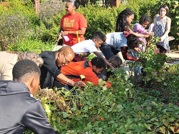 students employees school garden