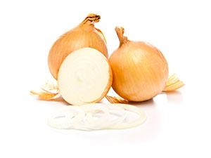 onion slices