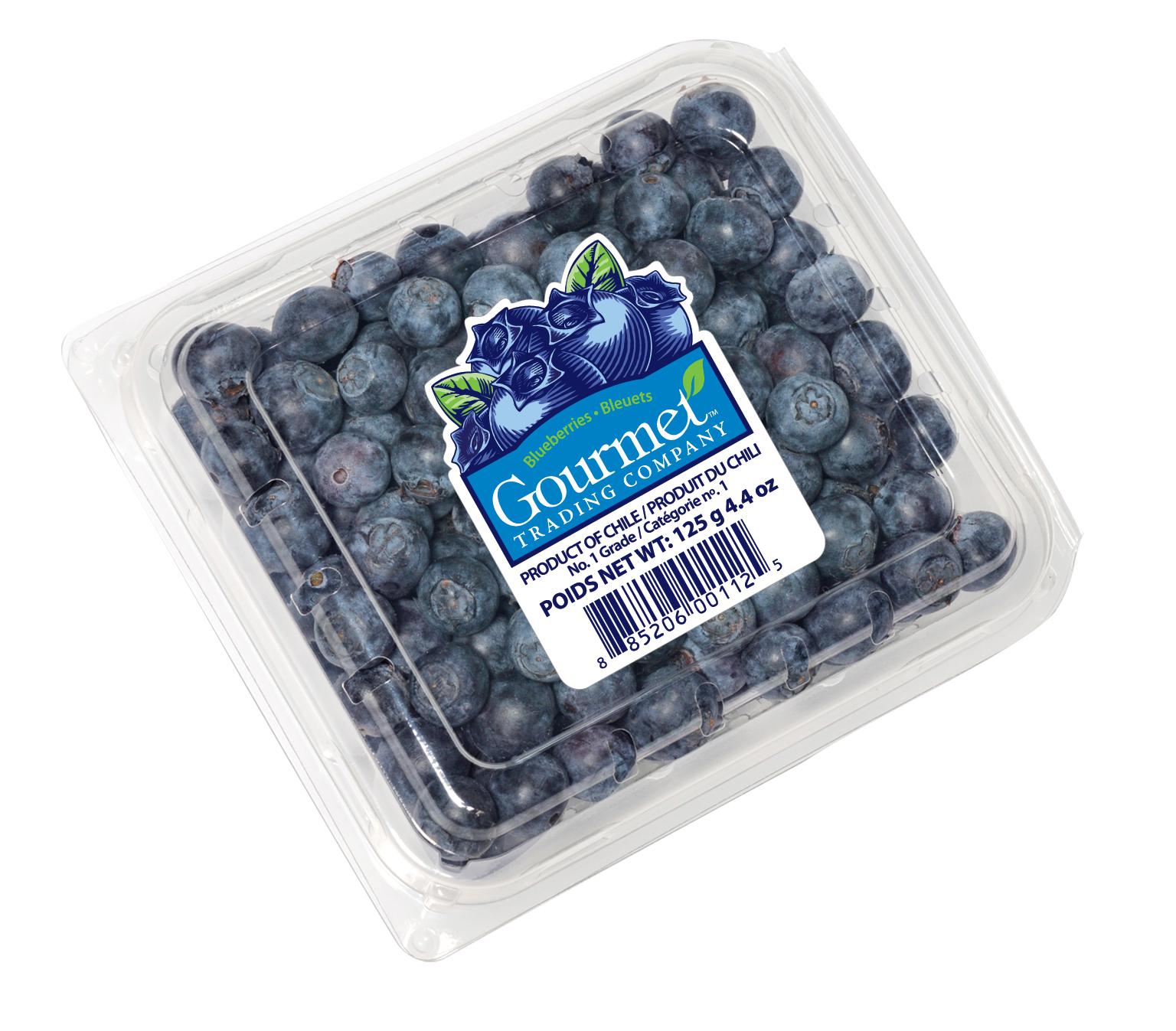 Chile Blueberry Season Begins