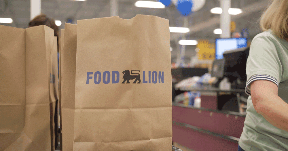food lion shopping bags