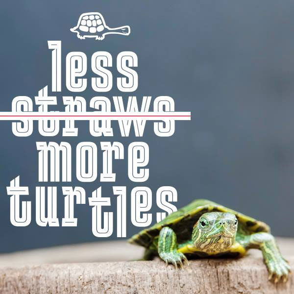 less straws more turtles