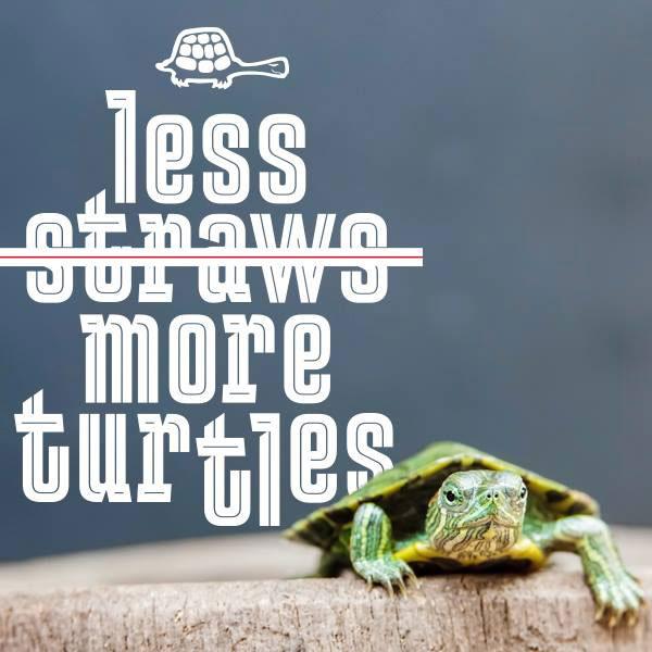 less straws more turtles