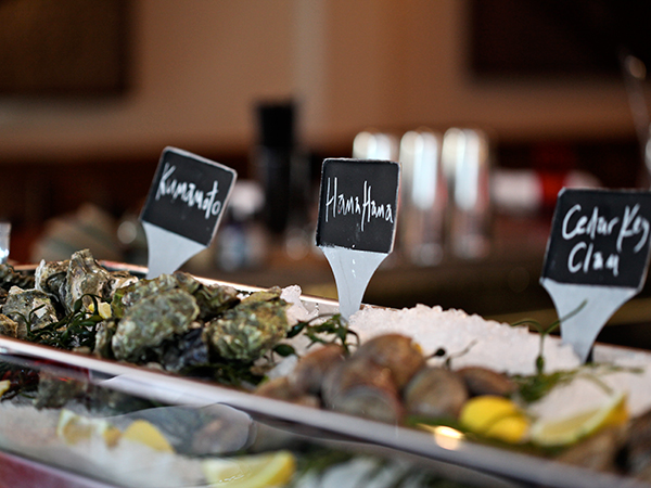oyster closeup signs