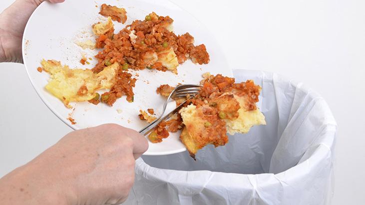 plate food trash