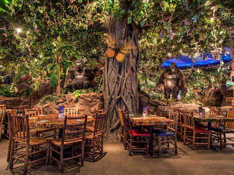 Rainforest Cafe 2016