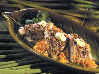 Seed Catfish