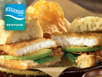 South Paws Flounder Fillets and Avocado Sandwich