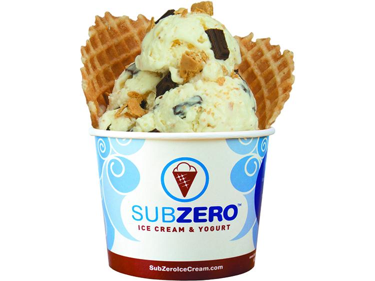 Image result for sub zero ice cream